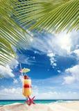 Świeży tropikalny koktajl na pogodnej plaży w Maldives Obraz Royalty Free