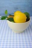 Świeży wapno i cytryny w pucharze Zdjęcia Stock