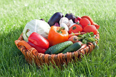 Świeży warzywo obraz stock