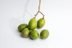 świeży wieprz śliwki dorośnięcie na drzewie, Otaheite jabłko dzwoni Zdjęcia Royalty Free