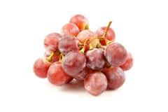 Świeży winogrono na białym tle świeży gronowy dobry dla zdrowego Zdjęcie Royalty Free