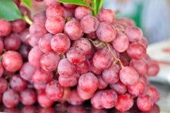 Świeży winogrono Fotografia Stock