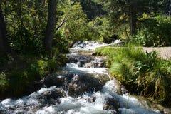 Świeży wiosny wody bieg przez lasu zdjęcie royalty free