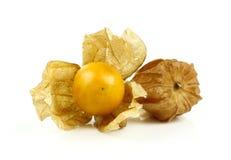 Świeży złoty przylądka agrest Fotografia Stock