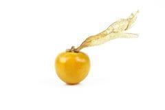 Świeży złoty przylądka agrest Zdjęcie Stock