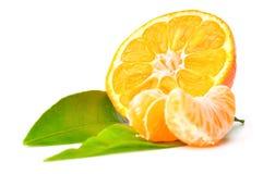 świeży zamknięta świeża mandarynka Zdjęcie Stock