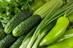 Świeży, zdrowy, organicznie zielony warzywa tło z ogórkiem, zielony pieprz, pietruszka, zucchini i scallions, Zdjęcie Royalty Free