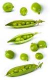 świeży zielonego grochu set Fotografia Royalty Free