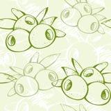 Świeży zielonej oliwki wzór Fotografia Stock