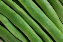 Świeży zielony biegacz fasoli tło Fotografia Royalty Free