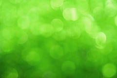 Świeży zielony bokeh zaświeca abstrakcjonistycznego tło Zdjęcie Stock