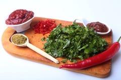 Świeży zielony cilantro, kolendrowi liście, pomidorowa pasta, chili pieprz i pikantność na drewnianej desce, Składniki dla mięsa Obraz Stock