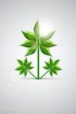 Świeży Zielony liść royalty ilustracja