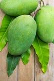 Świeży zielony mango Obrazy Stock