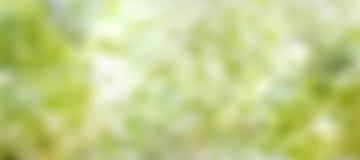 Świeży zielony wiosny tło Obraz Royalty Free