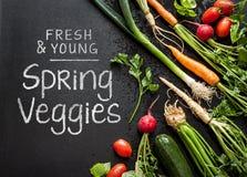 'Świeżych i młodych wiosen veggies' plakatowy projekt Warzywa na czarnym chalkboard od above zdjęcie stock
