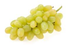 świeżych owoc gronowy biel Obrazy Royalty Free