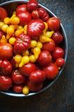 świeżych pomidorów obraz royalty free