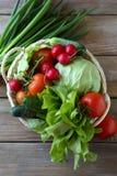 Świeżych rolnych warzyw odgórny widok Obraz Stock