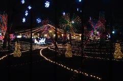 świecący pokaz przy Nową Year's wigilią przy Lincoln parka zoo w Chicago obraz stock