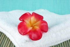 świeca ręcznik white zdjęcie royalty free