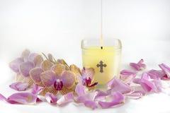 Świeczka, orchidee i Różani płatki, Zdjęcie Stock