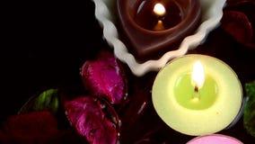 Świeczki kwiatów i liście na wodzie zbiory