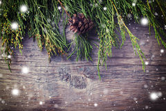 Świerczyna rozgałęzia się na drewnianym tle Obrazy Stock