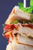 świetlicowa kanapka fotografia stock