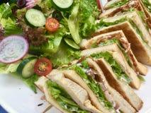 Świetlicowa kanapka z świeżą sałatką zdjęcie stock