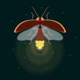 Świetlik z otwartymi skrzydłami ilustracja wektor