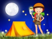 Świetliki w nocy Fotografia Stock
