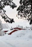 świetna miła zima Fotografia Stock