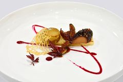 Świetny Łomota danie główne - Fruity Terrine zdjęcia stock