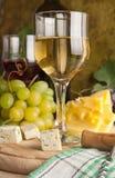 świetny szklany biały wino Fotografia Royalty Free