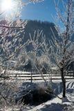 Świetny zim gór krajobraz słoneczny dzień Zima spadek Jaskrawi kolory Zimy lasowa lasowa rzeka Gałąź w hoar Fotografia Royalty Free