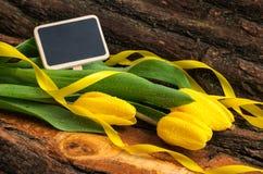 Świezi żółci tulipany z wodnymi kroplami zdjęcie stock