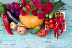 Świezi żniw warzywa, owoc i kwiaty, Astra zdjęcie stock