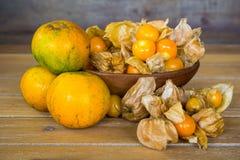 Świezi agresty i pomarańcze Zdjęcia Royalty Free