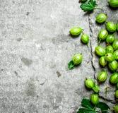 Świezi agresty z liśćmi Na kamienia stole Fotografia Royalty Free