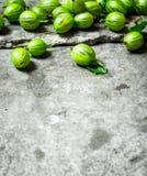 Świezi agresty z liśćmi Na kamienia stole Obraz Royalty Free