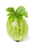 Świezi agresty z liściem odizolowywającym na białym tła zbliżeniu makro- Zdjęcia Stock