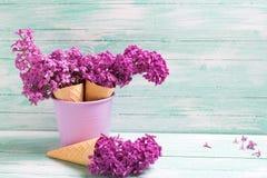 Świezi bzów kwiaty w gofrze konusują na turkusowym drewnianym backgr Fotografia Stock