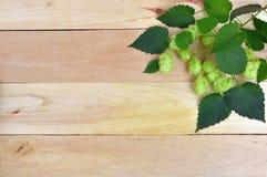 Świezi chmiel rożki z liśćmi na drewnianym tle zdjęcie royalty free