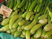 Świezi Courgettes Lub Zucchini Dla sprzedaży Zdjęcie Royalty Free
