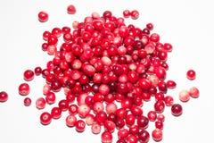 Świezi cranberries na białym tle, Obraz Stock