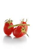 Świezi czereśniowi pomidory obraz royalty free