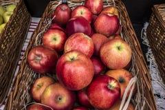 Świezi czerwoni dojrzali wielcy jabłka w łozinowym koszu na targowym cou Fotografia Stock