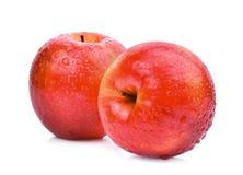 Świezi czerwoni jabłka z wodnymi kroplami odizolowywać na bielu Zdjęcia Stock