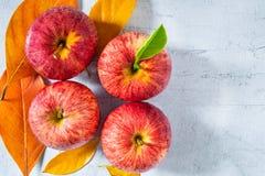Świezi czerwoni jabłka z zielonymi liśćmi obraz stock